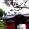 22.東京 護国寺 紫陽花