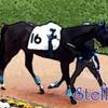 【一口馬主】シルク2018年度第2回追加募集馬公開&ブローイングスノーくんの調教動画