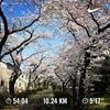 25:桜パトロールとお味噌汁