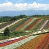 何となく落ち込む?北海道の美しい景色が一年中癒してくれます【カレンダー・口コミ・経験談】