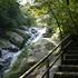 屋久島最終日 白谷雲水峡(もののけ姫の森)と千尋の滝