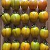 渋柿を美味しく食べる方法