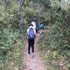 【大阪】交野山の観音岩