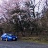 雨と桜とインプ