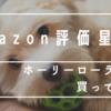 Amazon評価星4!ホーリーローラーを買ってみた。