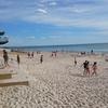 【写真】オーストラリアはビーチが超美しい