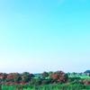 関東*古河花火大会*2017*20000発の花火(^-^)