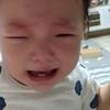 1歳と27日 不機嫌泣き叫ぶ