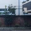 駒込中学校の煉瓦塀  豊島区駒込