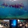 グループで沖縄の海を満喫!