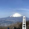 金時山からあっぱれな富士山