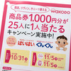 WAKODO|西友、リヴァン、サニーで使える商品券1,000円分が25人に1人当たるキャンペーン実施中