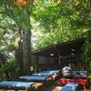 深大寺温泉へ 新緑の気晴らし