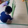子供の日の筋トレ