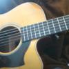 社会人がギター弾き語りを一年習った感想