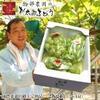 平川 沖縄はまだ買うな!最安値は楽天市場、ヤフオク、ヤフーショッピングのどこ?