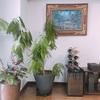 世界の国で買ったモノ@我が家① バリ島の絵画