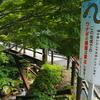 粥川ウナギ生息地(岐阜県郡上)