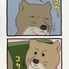 チベットスナギツネの砂岡さん「タイミング」