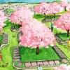 樹木葬の人気の理由と注意点を専門家が解説!!