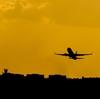 新型コロナウイルス大流行時の帰国、空港の様子や検疫の流れについて