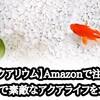 【アクアリウム】Amazonで注文!低コストで素敵なアクアライフ!