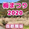 梅まつり2020~東京から日帰りドライブできる関東近郊の梅の名所・梅林・梅園まとめ~