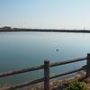 新池(三重県松坂)