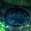 限りなく透明に近いブルー 沼津 柿田川公園 湧き水【オススメ】