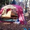 キャンプレポNo.5 豊里ゆかりの森
