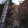 平成29年 金華山「初巳大祭神輿渡御」