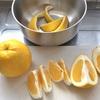 河内晩柑でマーマレード作り。炭酸水で割るのもおいしい
