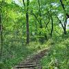 広大な土地と圧倒的な自然!多摩市桜ヶ丘公園。