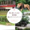 車に乗ったまま動物園!富士サファリパーク~コロナ感染リスクを避けておでかけ~