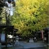 西国第十二番札所「岩間寺」と宇治神社/宇治上神社