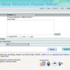 gene featureを視覚化するwebサービス GSDS 2.0