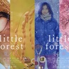 little forest / 夏秋冬春