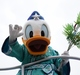 今週もディズニー七夕デイズ@TDL / Disney Tanabata Days, again at Tokyo Disneyland