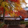 京都・京丹波 - 玉雲寺の紅葉
