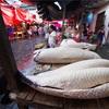 世界一周150日目前編 ペルー(49) 〜世界最大の淡水魚・ピラルクーの並ぶ市場(アマゾン川ジャングル1日目)〜