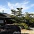 【大阪】がんこ岸和田五風荘。子連れOKの歴史ある邸宅ランチ