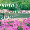 あつぎの春:Sony α7c + SEL135F18GM
