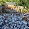 京都 祇園祭・神幸祭・(7月10日~)還幸祭7/24