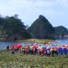 24日に西伊豆で堂ヶ島トンボロ開きが行われます