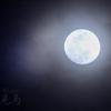 久しぶりの月撮影