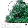 3coinsスリコのクリスマスツリー