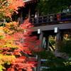 京都の東福寺の写真撮影を禁止しないで混乱を避ける方法(案)