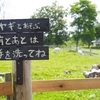 【厚沢部町】コーヒーとカレーの店 カンペシーノ|看板ヤギのいるカレー店で絶品ランチ