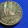 【ニュージーランド1デカくて金色のコイン】 2ドル(2 dollers)コインについてまとめてみた