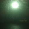 濃霧の夜桜